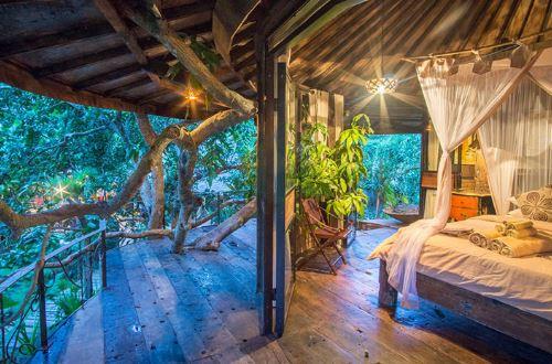 Suuntaa unelmien viidakkoseikkailulle Balille! - Casinobonukset